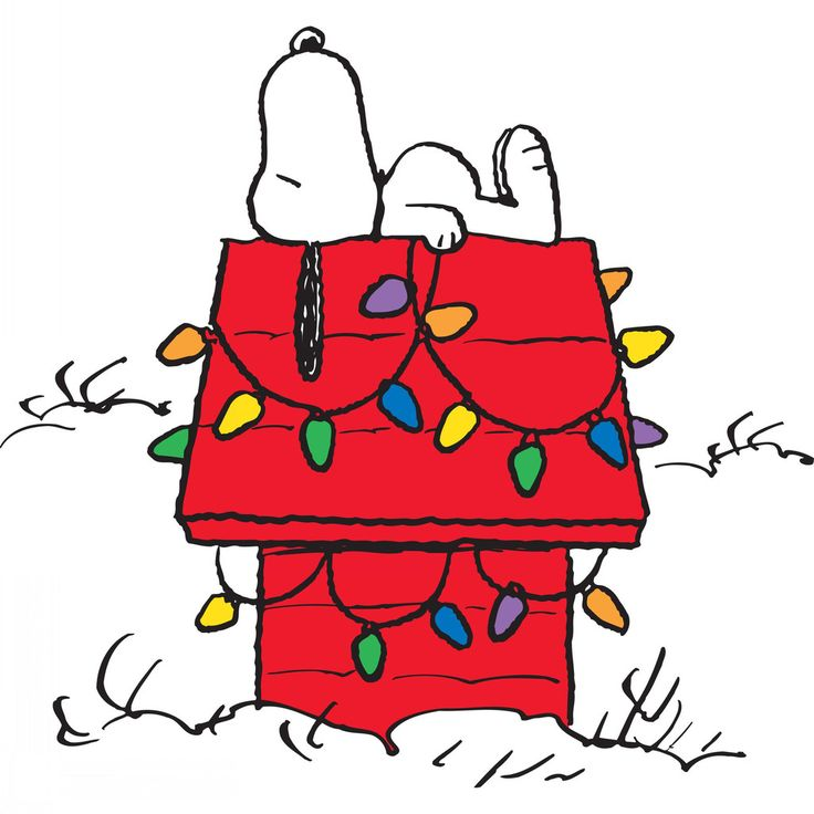 Snoopy decorates his doughuse with christmas lights