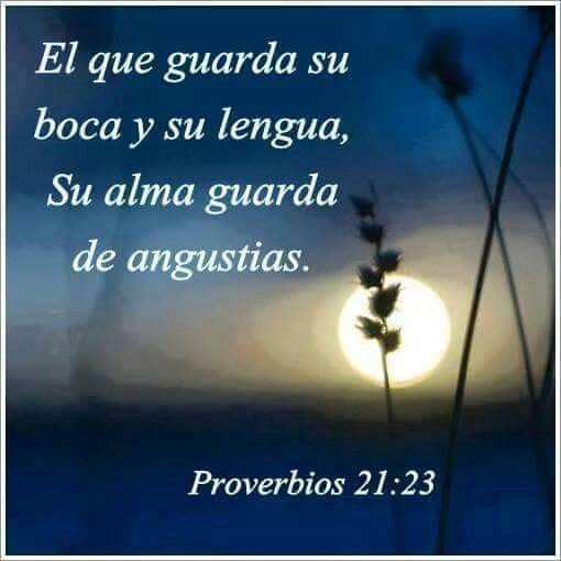 Proverbios 21:23