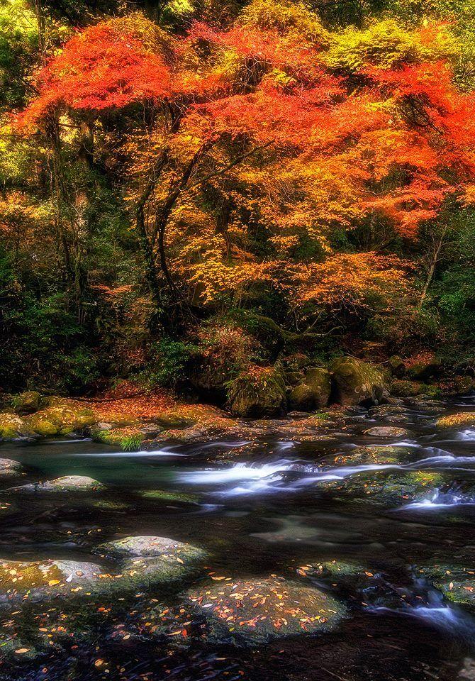 Kikuchi gorge, Kyushu, Japan