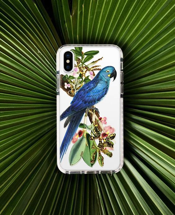 New Blue Parrot transparent iPhone case, available for many different models! #Casetify #Fifikoussout #iphonecase