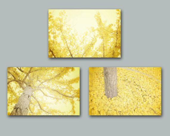Yellow Wall Art Set of Three, Yellow Tree Photography, Lemon Yellow Modern Wall Art Yellow Ginkgo Trees Leaves Mustard Yellow Grey Prints on Etsy, $30.00