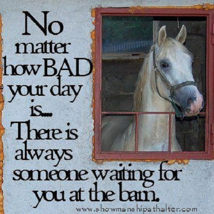 Always! Weather it be sheep, goats, cattle or horses they are always there. And they depend on you.