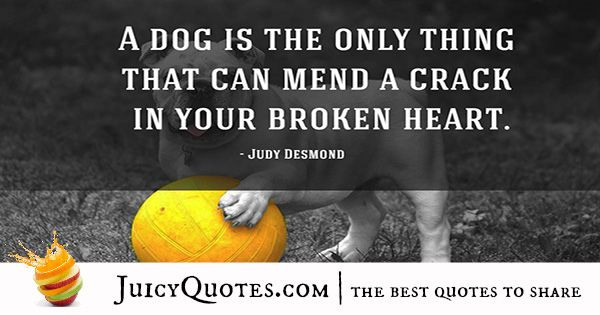 Quotes About Dogs - 44