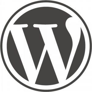 Business Website Design in Ireland Need Pinguis Design
