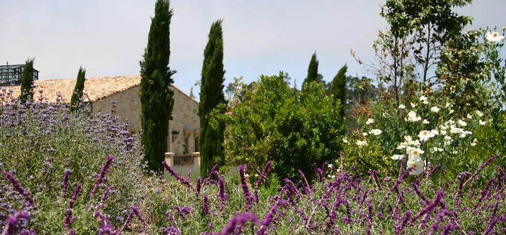 lavender, stone, cypress