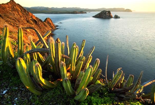 Sonora México