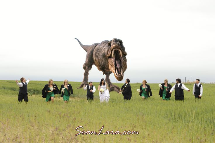 T-Rex wedding photo! When I originally met with this bride, she said she HAD to have a shot like this. W#T-Rex #Trex #Trexweddingphoto #bridalpartyrunning #bridalparty #Coloradowedding #sarcheteventcenter