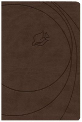 NIV New Spirit Filled Life Bible, Imitation Leather, Rich Stone Indexed