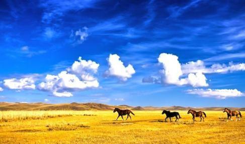 Mongolie-Couleurs de Mongolie randonnée