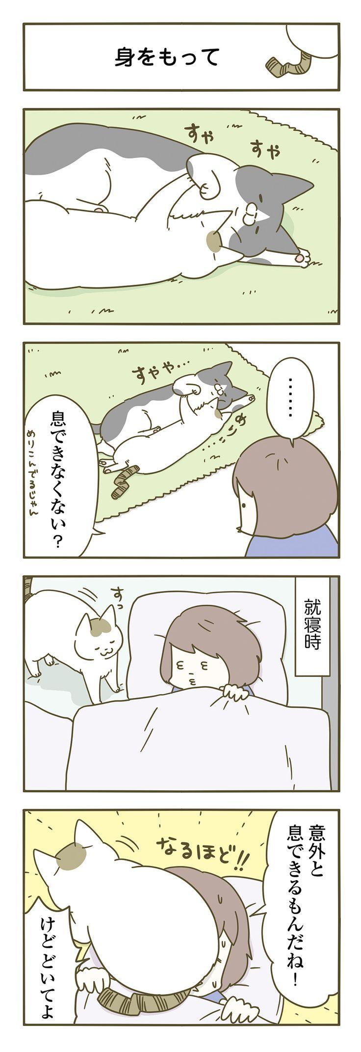 【期間限定!毎日連載】「うちの猫がまた変なことしてる。」第14話