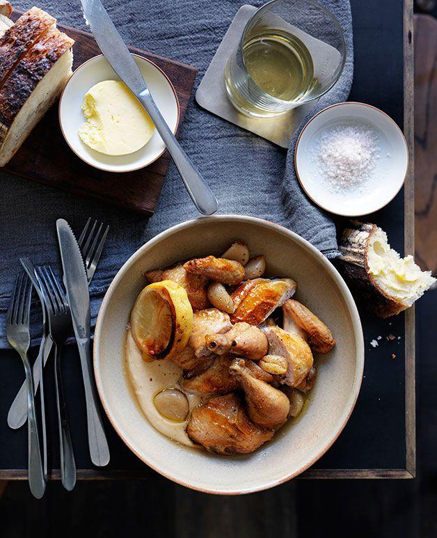 Roast spatchcock with garlic-bread sauce recipe | Chicken recipe :: Gourmet Traveller