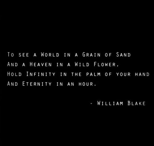 William Blake Love Quotes: 34 Best HRockstars Favorite Quotes Images On Pinterest