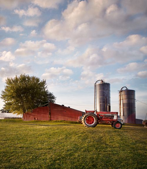 How to plan a farmstay vacation this summer -- and learn where your food really comes from.