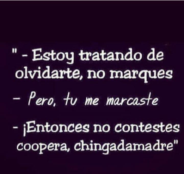Chingadamadre