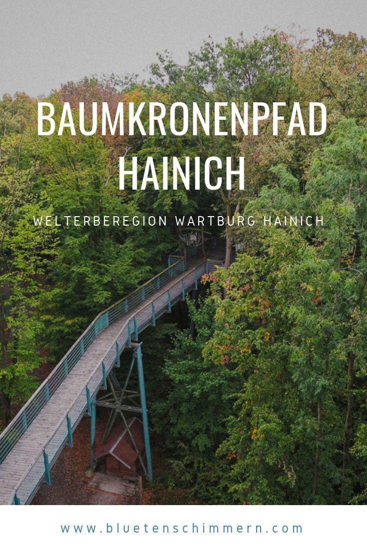 Baumkronenpfad Im Nationalpark Hainich Dem Urwald Aufs Dach Steigen Urlaub Thuringen Ausflug Reisen Deutschland