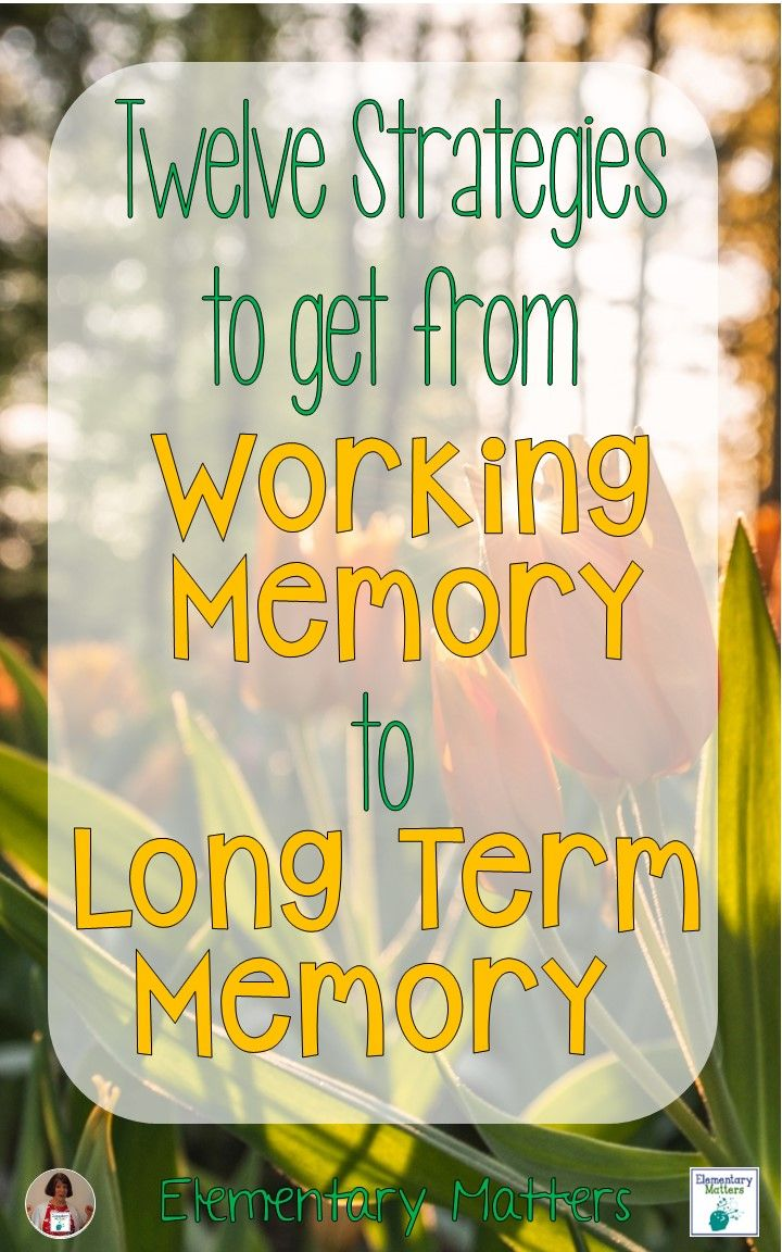 images about organizational skills executive twelve strategies to get from working memory to long term memory things to