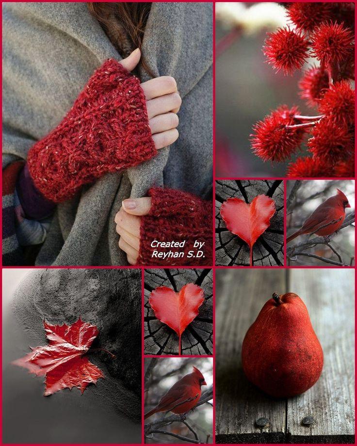 '' Autumn in Red '' by Reyhan Seran Dursun