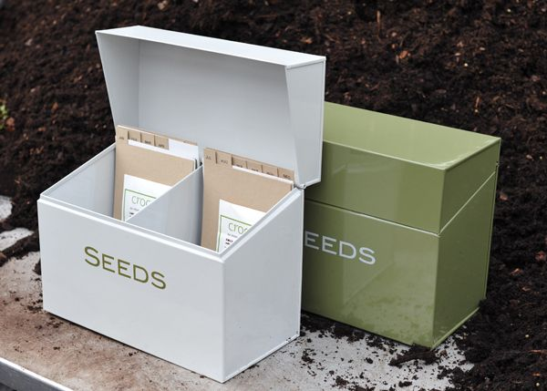 Buy Calendar seed storage box: Delivery by Waitrose Garden in association with Crocus
