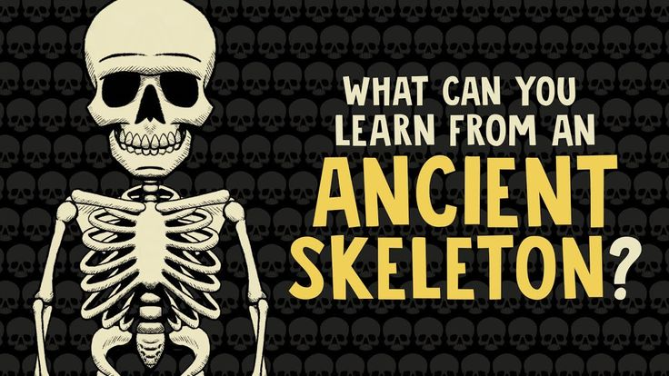 Ancient skeletons can tell us a great deal about the past, including the age, gender and even the social status of its former owner. Find out more...