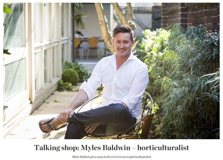 8 Tips For Small Gardens by Myles Baldwin  #smallspaces #smallgardens #urbangarden #landscape #landscapearchitecture #landscapedesign #DIY #gardentips