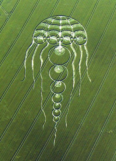 Los Crop Circles Mas Raros                              …