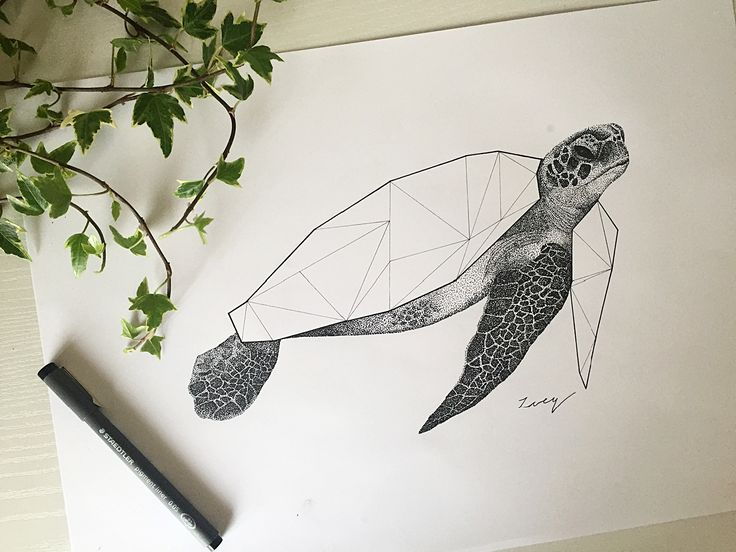 • Geometric abstract turtle • Black ink • Drawing