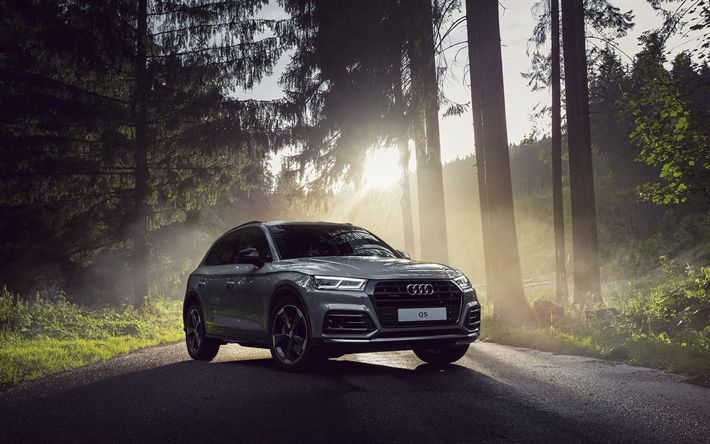 Download wallpapers Audi Q5, road, 2018 cars, crossovers, new Q5, forest, Audi