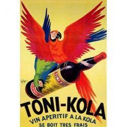 Perroquet - Toni-Kola