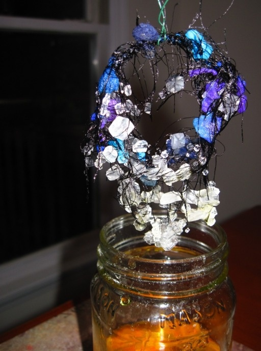 Borax crystals I made them with my students last year...super easy!