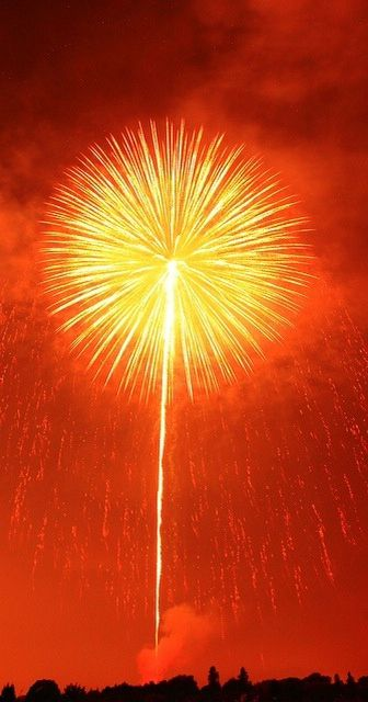 Orange is known to draw attention, The first things that come to mind while seeing orange is enthusiasm, excitement and warmth such as this bright firework.