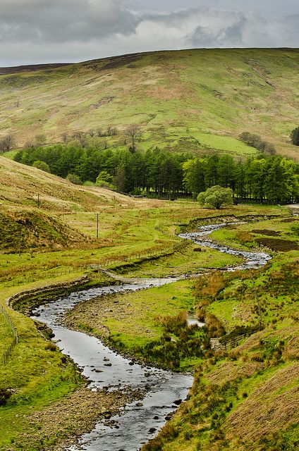 The Forest of Bowland, also known as the Bowland Fells, is an area of barren gritstone fells, deep valleys and peat moorland,