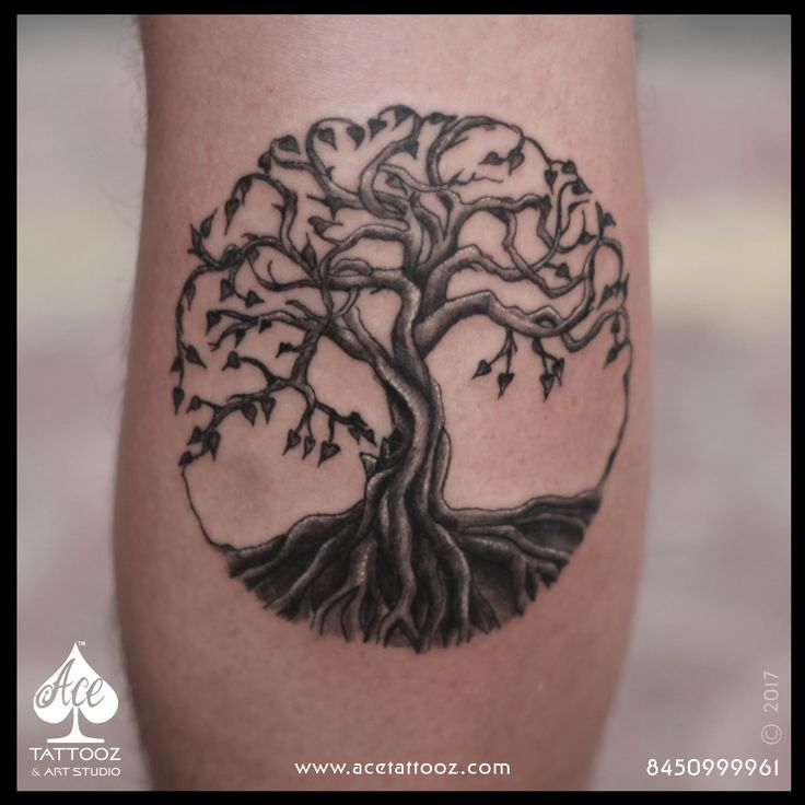 17 best ideas about tree of life tattoos on pinterest life tattoos nice tattoos for guys and. Black Bedroom Furniture Sets. Home Design Ideas