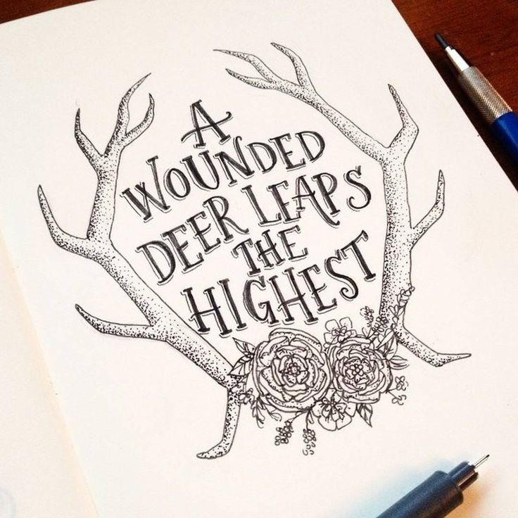 A wounded deer leaps the highest.