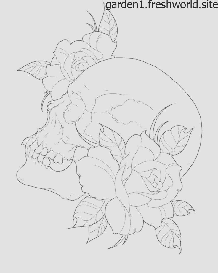 Skull Tattoos Outline Skull Tattoos Structure Skull Tattoos Outline Crane Tatouages Contour E In 2020 Skull Tattoo Flowers Skull Tattoos Animal Skull Tattoos