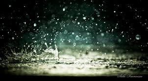 profumo di pioggia estiva - Cerca con Google
