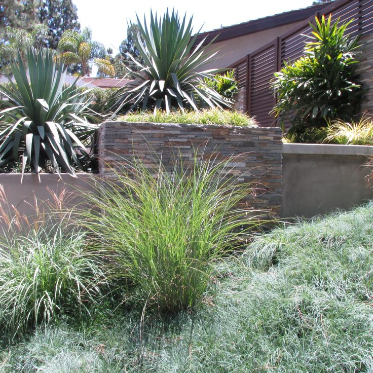 Create A Drought Friendly Landscape. (Originally Featured On A California Friendly  Landscape. Succulents GardenDrought Tolerant LandscapeOrange County