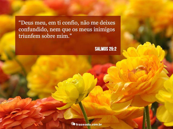 Deus meu, em ti confio, não me deixes confundido, nem que os meus inimigos triunfem sobre mim. Salmos 25:2