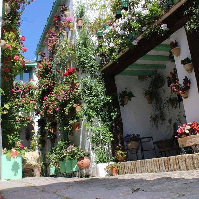 Que Bonitos Son Los Patios En Mayo Cordobaesp Andalucia Patiosdecordoba Patioscordobeses Patios Flores Flowe Patios Cordobeses Patios Patio Y Jardin