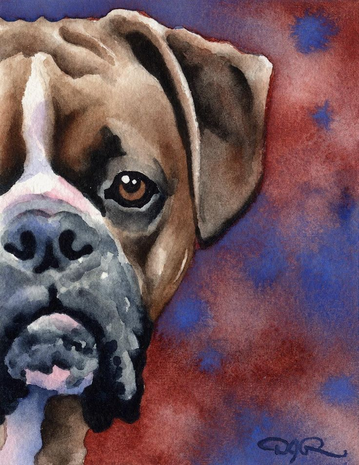 BOXER Dog Signed Art Print by Artist DJ Rogers by k9artgallery   WATERCOLOR