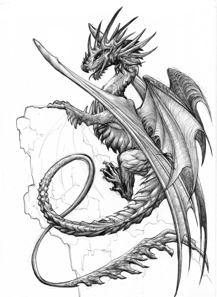 1000 Images About Dragons Amp Other Mythical Creatures On