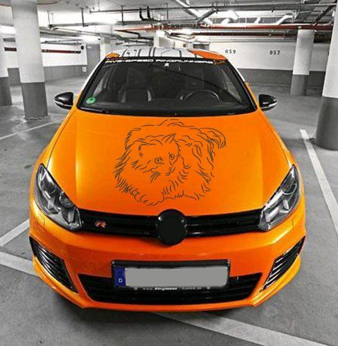 Best Decals For Car Hood Images On Pinterest Car Decals - Best automobile graphics and patternsbest stickers on the car hood images on pinterest cars hoods