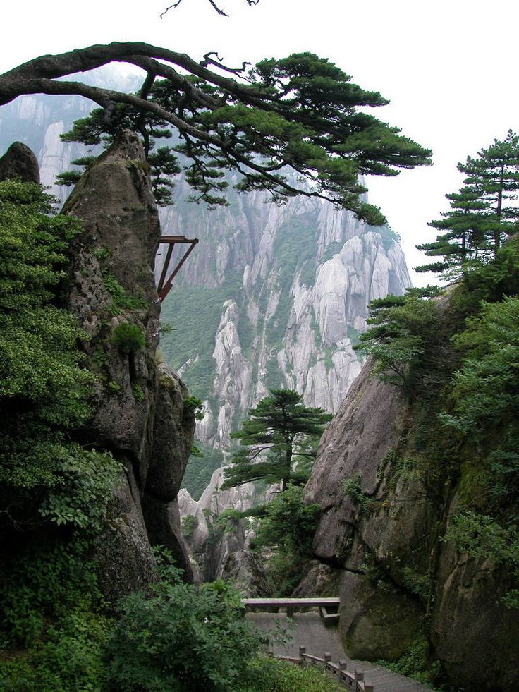 """Mount Huangshan, China. Huangshan National Park is a """"sister park"""" to Yosemite National Park in California. You can kind of see why."""