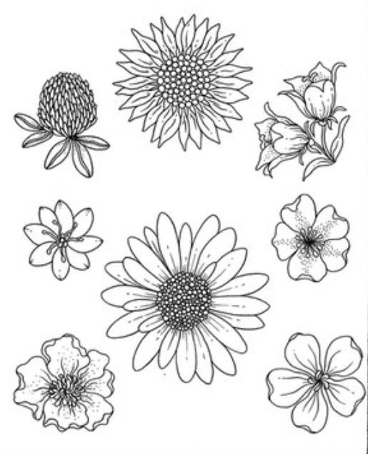 Pin By Dede King On Blank Coloring Pages Blank Coloring Pages
