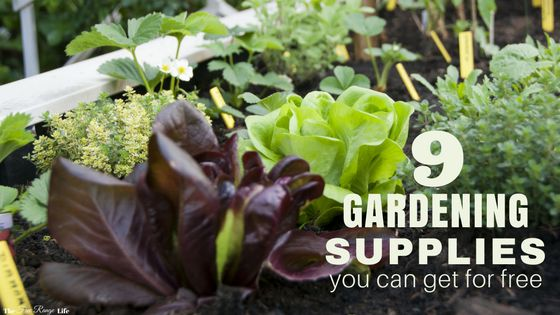 Gardening doesn't have to be expensive. Many gardening supplies can be found for cheap or even free! Here are 9 gardening supplies you can get for free!