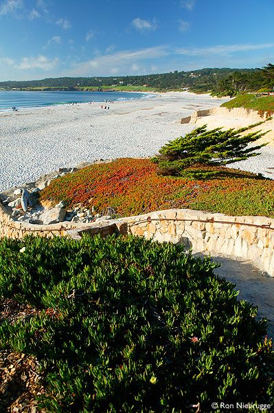 Carmel Beach, Carmel by the Sea, Monterey Peninsula Photo