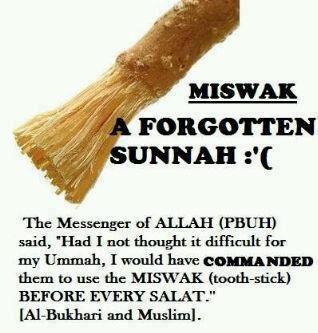 miswak-sunnah