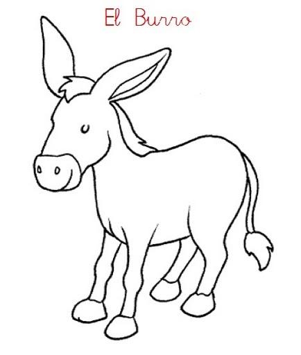 7 best Burros images on Pinterest | Burritos, Donkeys and Adorable ...