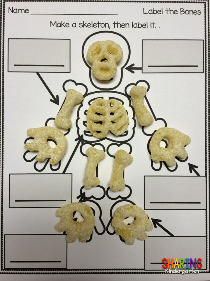 "When Food Becomes Fun!  (Using Cheetos ""Bag of Bones"")  Blog Post by Sharing Kindergarten"