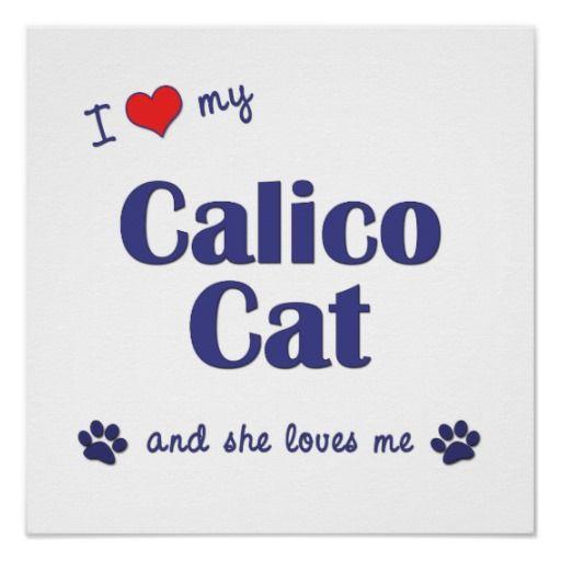 i love my cat!   Love My Calico Cat (Female Cat) Print