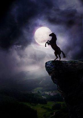 Mustang im Mondlicht! Ist das nicht schön?!